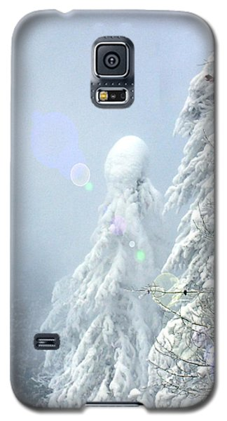 Snowy Trees Galaxy S5 Case