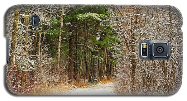 Snowy Tunnel Of Trees Galaxy S5 Case by Terri Gostola