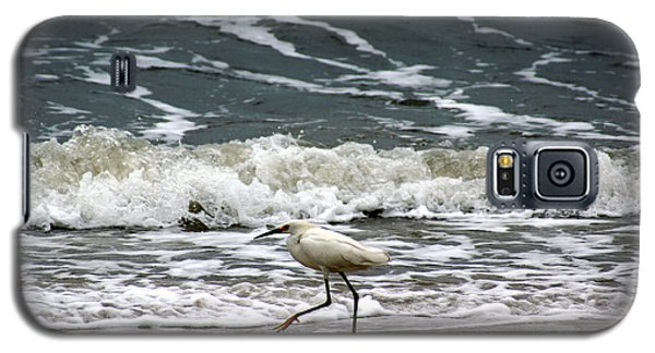 Snowy White Egret Galaxy S5 Case by Kim Pate