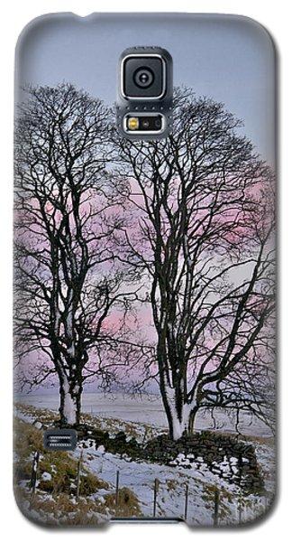 Snowy Winter Treescape Galaxy S5 Case