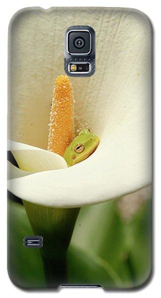 Snug As A Bug  Galaxy S5 Case