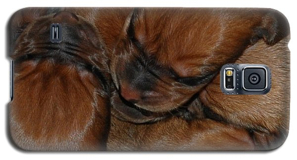 Galaxy S5 Case featuring the photograph Snuggle by Mim White