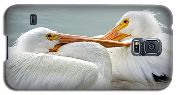 Snuggly Pelicans Galaxy S5 Case