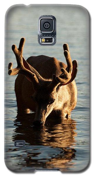 So I'm Thirsty Galaxy S5 Case