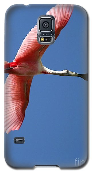 Soaring High Roseate Spoonbill Galaxy S5 Case