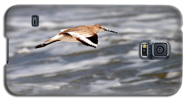 Soaring Willet Galaxy S5 Case