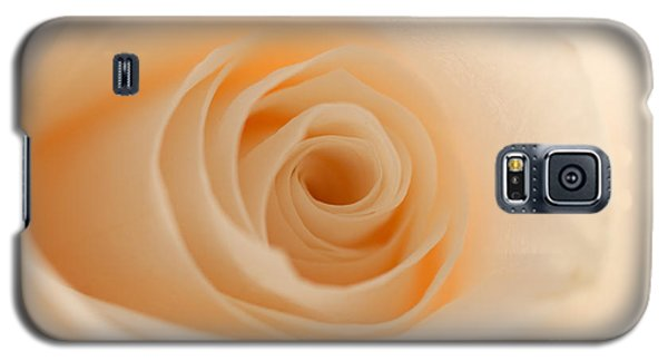 Soft And Creamy Rose Galaxy S5 Case