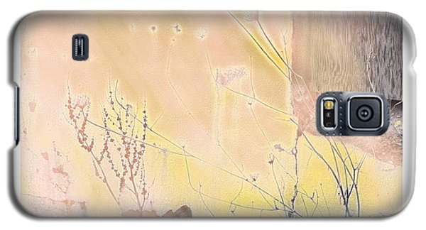 Galaxy S5 Case featuring the digital art Soft And Natural by Bob Salo