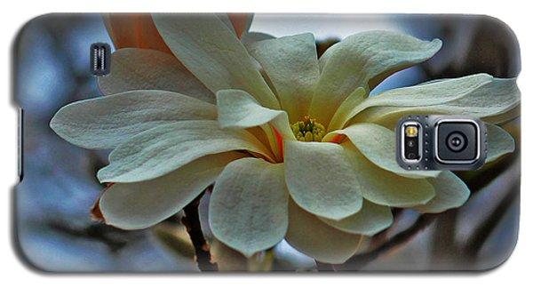 Soft Blooms Galaxy S5 Case by Rowana Ray