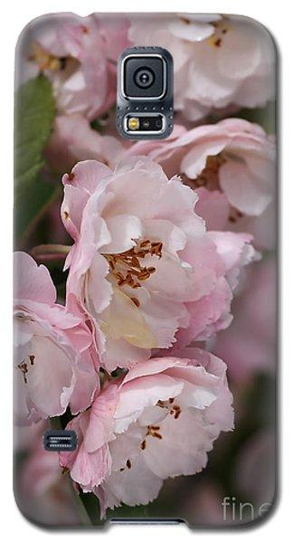 Soft Blossom Galaxy S5 Case