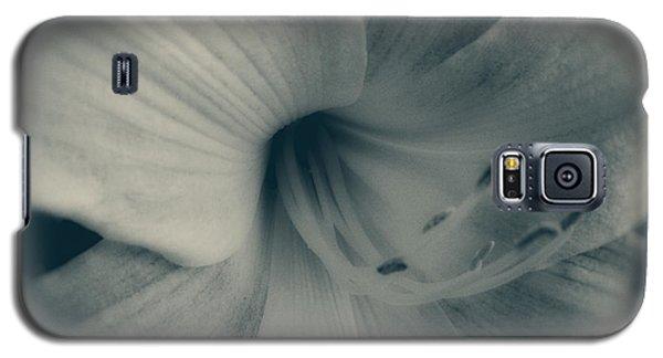 Soft Blossom Galaxy S5 Case by Paul Cammarata