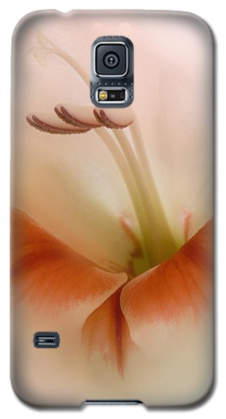 Soft Gladiolus Galaxy S5 Case