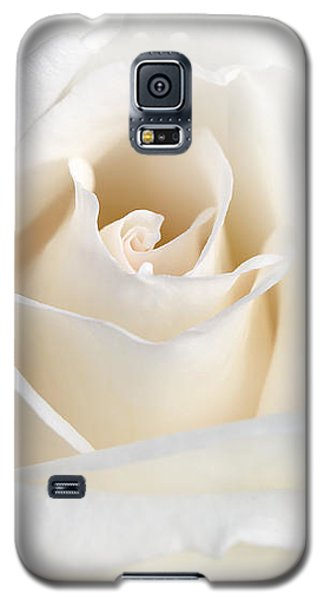 Soft Ivory Rose Flower Galaxy S5 Case