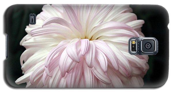 Soft Lavendar Mum Galaxy S5 Case