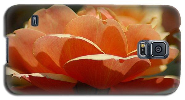 Galaxy S5 Case featuring the photograph Soft Orange Flower by Matt Harang