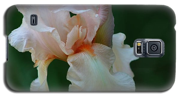 Soft Peach Iris Galaxy S5 Case by Nance Larson