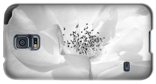 Soft Petal Rose In Black And White Galaxy S5 Case