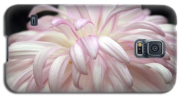 Soft Petals II Galaxy S5 Case