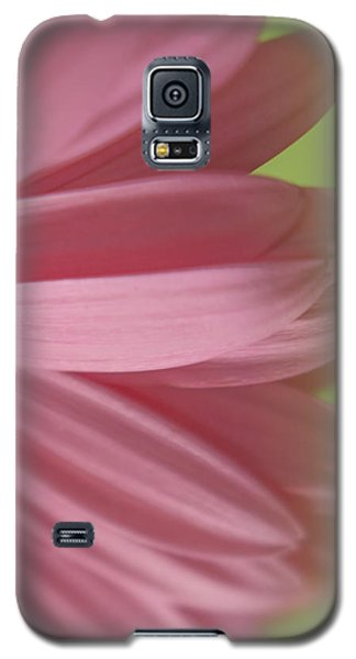 Soft Petals Galaxy S5 Case