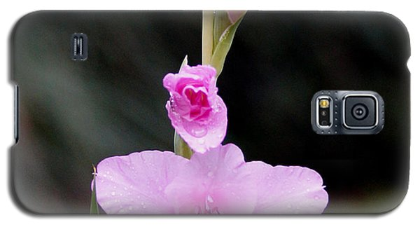 Soft Pink Glad Galaxy S5 Case by Kim Pate