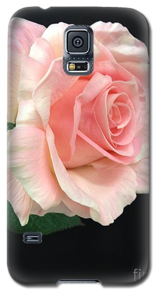 Galaxy S5 Case featuring the photograph Soft Pink Rose 1 by Jeannie Rhode