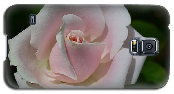 Galaxy S5 Case featuring the photograph Soft Pink Rose by Jeannie Rhode