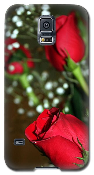 Soft Roses Galaxy S5 Case by Karen Nicholson