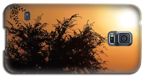Soft Sunrise Galaxy S5 Case