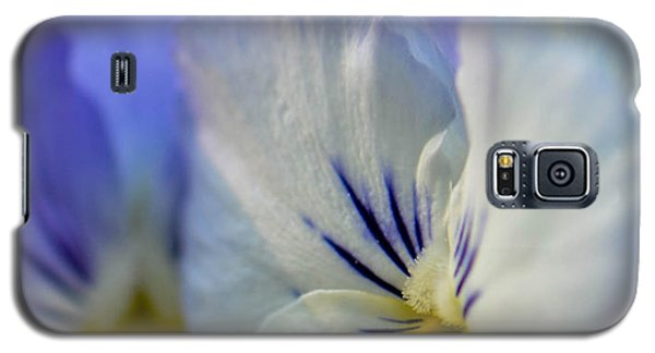 Soft White Pansy Galaxy S5 Case by Amy Porter