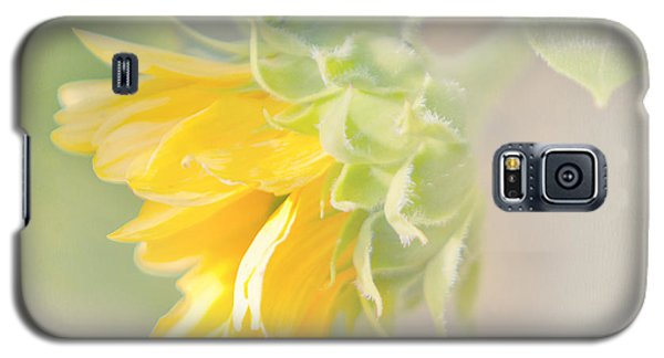 Soft Yellow Sunflower Just Starting To Bloom Galaxy S5 Case