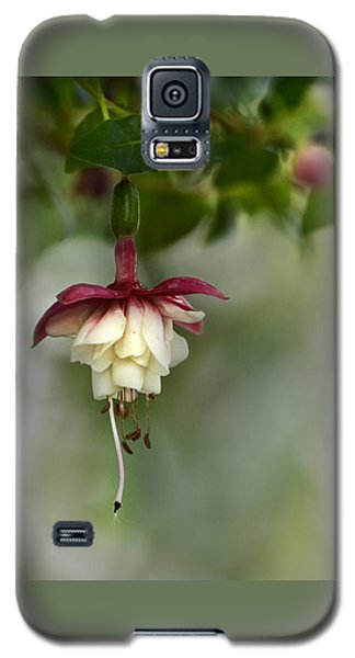Softly Hanging Galaxy S5 Case