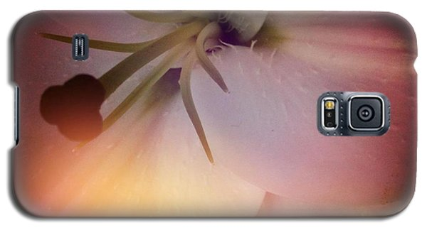 Softness  Galaxy S5 Case