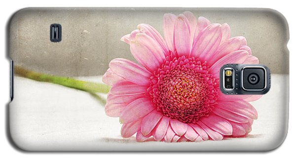 Softness In Pink Galaxy S5 Case