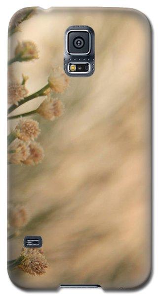 Softness In The Desert Galaxy S5 Case
