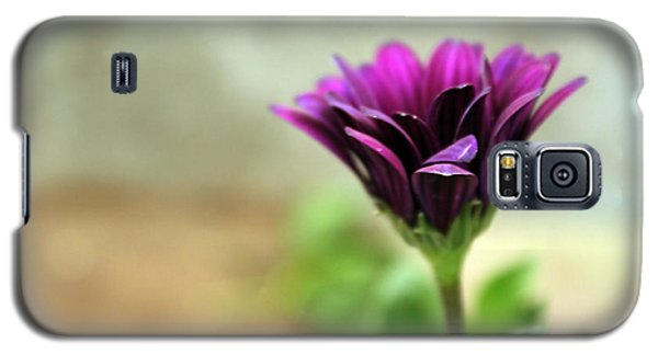 Galaxy S5 Case featuring the photograph Solitaire by Chris Anderson