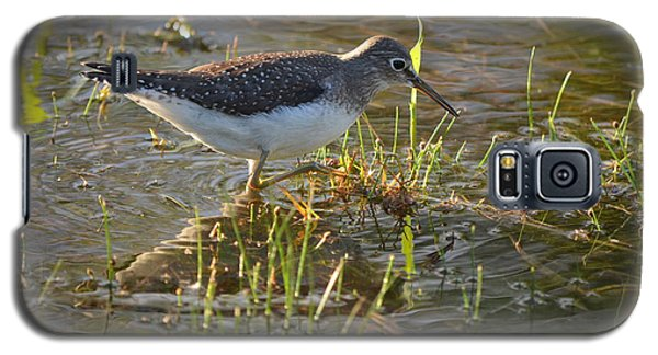 Solitary Sandpiper 2 Galaxy S5 Case by James Petersen