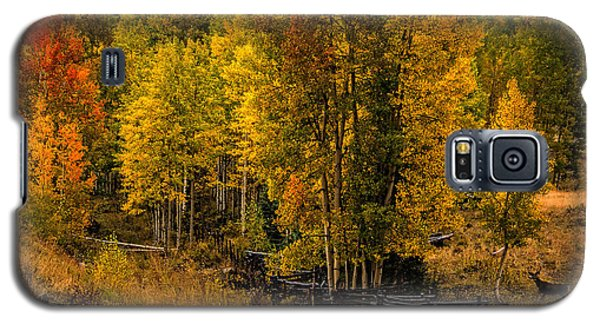 Galaxy S5 Case featuring the photograph Solitude by Ken Smith