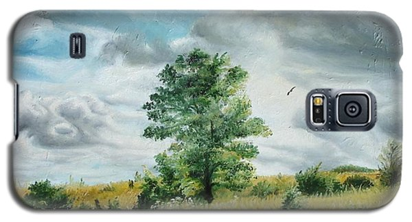 Galaxy S5 Case featuring the painting Solitude by Sorin Apostolescu