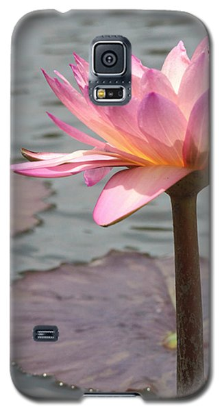 Solo Waterlily Galaxy S5 Case