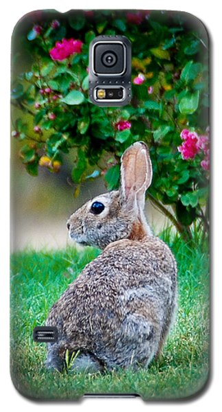 Some Bunny Loves You Galaxy S5 Case