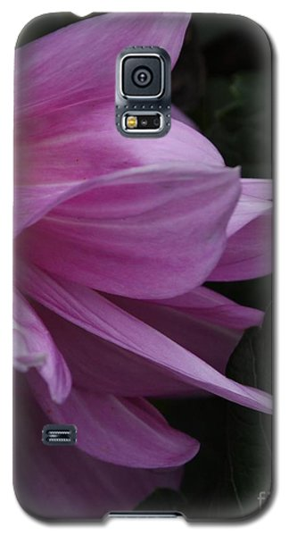 Galaxy S5 Case featuring the photograph Somehow by Geri Glavis