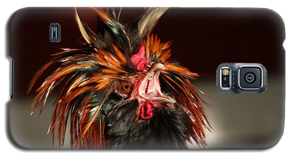 Galaxy S5 Case featuring the photograph Something To Crow About by Lynn Sprowl