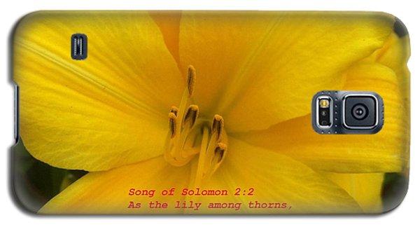 Song Of Solomon 2  2 Galaxy S5 Case by Saribelle Rodriguez