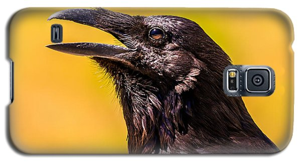 Song Of The Raven Galaxy S5 Case