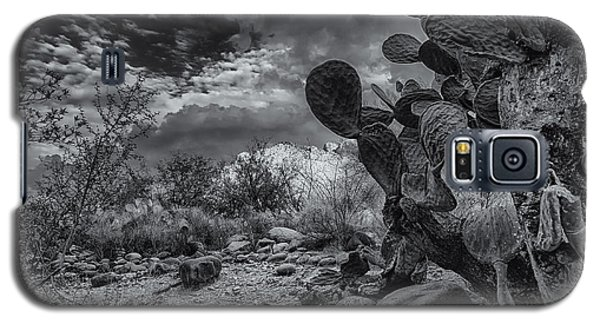 Galaxy S5 Case featuring the photograph Sonoran Desert 15 by Mark Myhaver