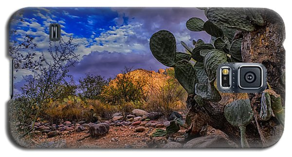 Galaxy S5 Case featuring the photograph Sonoran Desert 54 by Mark Myhaver