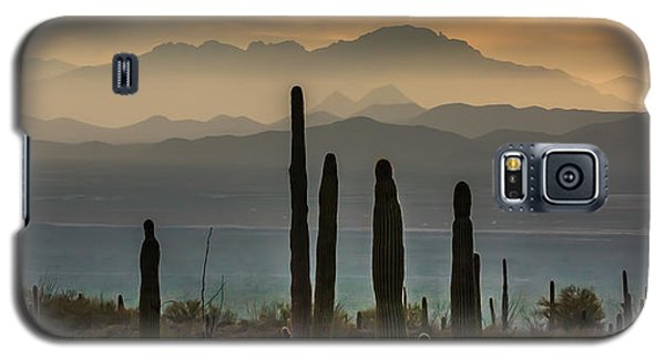 Sonoran Desert Sunset Galaxy S5 Case