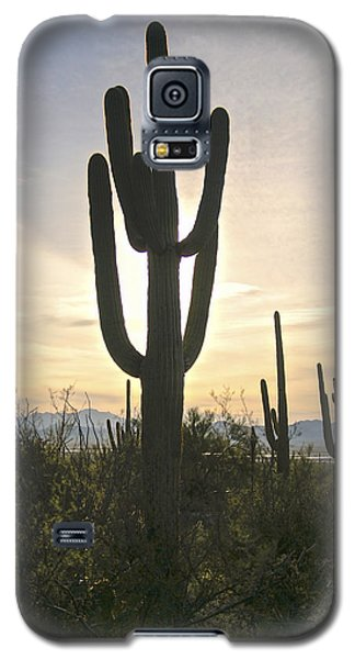 Sonoran Desert View Galaxy S5 Case