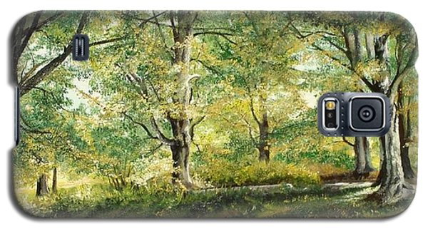 Galaxy S5 Case featuring the painting Sorica Mountain by Sorin Apostolescu