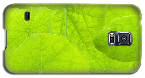 Spring Green II Galaxy S5 Case